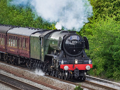 Flying Scotsman (Bruce Clarke) Tags: track olympus oxfordshire historic flyingscotsman locomotive devilsbackbonebridge greatwesternrailway steam oxford didcottooxfordrailway175thanniversary m43 hinksey train omdem1 heritage railway vintagetrains 75300mmii 60103 outdoor