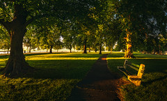 Seaside-Park-Bridgeport-Connecticut-USA_06152019-149-HDR-Pano (LBSimmsPhotography) Tags: sunny view background bridgeportct colorful connecticut culture landscape mood natural nature ngc northamerica outdoor parks scenic serene sky spring sun travel trees vibrant water weather