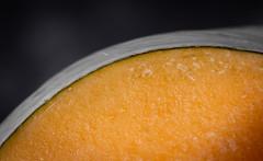 The Curve of a Pumpkin (johnstewartnz) Tags: pumpkin curve curves macro macromonday macromondays tripod 100mm 100mmf28lmacro 100mmmacro canon canonapsc apsc eos 100canon 7dmarkii 7d2 7d canon7dmarkii canoneos7dmkii canoneos7dmarkii