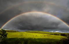June 15, 2019 Storm and Rainbows (Christy Turner Photography) Tags: christyturnerphotography calgary weather rainbow alberta rainbows extremeweather wx mammatus
