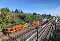 A P&W train races an interurban to the Springwater Trail bridge (Tysasi) Tags: pw portlandwestern trimet sd660 orangeline portlandmilwaukielightrail sn pmlr gp392