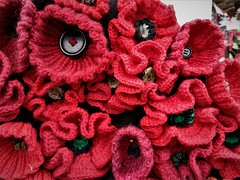 knitted poppies (SM Tham) Tags: newzealand southisland arrowtown shop poppy poppies flowers knitted crochet buttons red textures