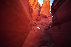Secret Canyon (CraDorPhoto) Tags: canon5dsr nature landscape canyon slotcanyon outside outdoors sandstone rockformations arizona usa