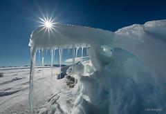 Midnight Sun-burst and Arctic Sea Ice (Eden Bromfield) Tags: seaice bylotisland baffinisland sunburst ice snow edenbromfield landscape arctic nunavut canada icesculptures roughice polarbears
