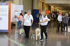 QI8A9066 (komissarov_a) Tags: uthsct annual american thoracic society meeting international ats2019 dallas tx dfw 2019 research education awards lectures phd md residents student nih science lungs air poster experience communication pleural empyema ali collaboration tyler texas healthsciencecenter komissarova streetphotography canon 5d m3 c8 lab sponsorship nаtionwide future professional carier presentation biochemistry immunology molecularbiology genetics translational animal models industry companies emka grant department cellular biology conference pulmonary fibrosis nhlbi fibrinolytic benefitdinner atsfoundationdinner biotechnology