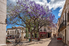 Sunday in Lagos (WS Foto) Tags: lagos portugal europe eu center trees blooming jacaranda bäume blüten platz lila blau sky blue white clouds