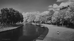 Canal du Midi, Carcassonne (markbangert) Tags: canal midi water france carcassonne infrared infrarot xt1 fuji 700nm