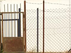 Gate & Fence on Bible Hill (zeevveez) Tags: זאבברקן zeevveez zeevbarkan canon biblehill gate fence shadow crow pine caption