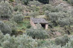Huesca (esta_ahi) Tags: huesca arquitectura architecture rural aragón españa spain испания
