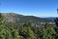 Montagnes Pyrénées (balese13) Tags: 100nikon 1855mm 2013 d5000 lesangles nikonpassion pyrénéesorientales yourbestoftoday arbres balese bleu blue forêt green nikon papillon pyrénées vert paysage 250v10f 500v20f 1000v40f