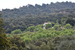 Una casita rodeada de almendros. Huesca (esta_ahi) Tags: huesca arquitectura architecture rural aragón españa spain испания