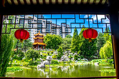 Traditional and Nuevo (Tony Shertila) Tags: nikon5300 australasia australia chinatown cruise ociania peacegarden ship sydney tourist worldcruise 201902251138480 ducky chinesegardenoffriendship garden city newsouthwales water pond lizard dragon