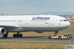 Lufthansa Airbus A340-313E D-AIFC Gander/Halifax (893279) (Thomas Becker) Tags: lufthansa dlh airbus a340313e a340313x a340300 a340 a343 daifc ganderhalifax staralliance msn379 151200 fwwjj 260101 goldhofer ast2 towbarless tow tug pushback fraport flughafen airport aeroport aeropuerto aeroporto fra eddf frankfurt plane spotting aircraft airplane avion aeroplano aereo 飞机 vliegtuig aviao аэроплан samolot flugzeug germany deutschland hessen rheinmain nikon d800 nikkor 70200 vrii fx raw gps aviationphoto cthomasbecker 170728 taxiing noseshot geotagged geo:lat=50039523 geo:lon=8596970 aerotagged aero:airline=dlh aero:man=airbus aero:model=a340 aero:series=300 aero:special=e aero:tail=daifc aero:airport=eddf