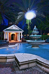 West Chase Fountain / Tampa, Florida. (glenn2meyer) Tags: west chase florida tampa fountain park montague street night shot illuminated panasonic fz1000 mark 2 palm tree water blue shadows
