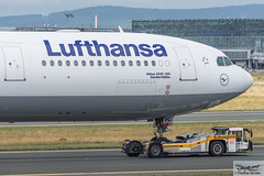Lufthansa Airbus A340-313E D-AIFC Gander/Halifax (720381) (Thomas Becker) Tags: lufthansa dlh airbus a340313e a340313x a340300 a340 a343 daifc ganderhalifax staralliance msn379 151200 fwwjj 260101 goldhofer ast2 towbarless tow tug pushback fraport flughafen airport aeroport aeropuerto aeroporto fra eddf frankfurt plane spotting aircraft airplane avion aeroplano aereo 飞机 vliegtuig aviao аэроплан samolot flugzeug germany deutschland hessen rheinmain nikon d7200 nikkor 80400g vrii dx raw gps aviationphoto cthomasbecker 170728 taxiing noseshot geotagged geo:lat=50039523 geo:lon=8596970 aerotagged aero:airline=dlh aero:man=airbus aero:model=a340 aero:series=300 aero:special=e aero:tail=daifc aero:airport=eddf