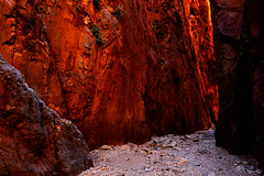 Late Afternoon in Standley Chasm (Rob Harris Photography) Tags: australia arid northernterritory outdoors outback tourism tourist country red redcentre desert remote gorge chasm canyon rock rockformation ochre orange travel travelphotography wanderlust scenic scenery landscape landscapephotography sacredplace traditionalowners