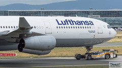 Lufthansa Airbus A340-313E D-AIFC Gander/Halifax (720385) (Thomas Becker) Tags: lufthansa dlh airbus a340313e a340313x a340300 a340 a343 daifc ganderhalifax staralliance msn379 151200 fwwjj 260101 goldhofer ast2 towbarless tow tug pushback fraport flughafen airport aeroport aeropuerto aeroporto fra eddf frankfurt plane spotting aircraft airplane avion aeroplano aereo 飞机 vliegtuig aviao аэроплан samolot flugzeug germany deutschland hessen rheinmain nikon d7200 nikkor 80400g vrii dx raw gps aviationphoto cthomasbecker 170728 taxiing noseshot geotagged geo:lat=50039523 geo:lon=8596970 aerotagged aero:airline=dlh aero:man=airbus aero:model=a340 aero:series=300 aero:special=e aero:tail=daifc aero:airport=eddf
