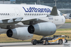 Lufthansa Airbus A340-313E D-AIFC Gander/Halifax (720389) (Thomas Becker) Tags: lufthansa dlh airbus a340313e a340313x a340300 a340 a343 daifc ganderhalifax staralliance msn379 151200 fwwjj 260101 goldhofer ast2 towbarless tow tug pushback fraport flughafen airport aeroport aeropuerto aeroporto fra eddf frankfurt plane spotting aircraft airplane avion aeroplano aereo 飞机 vliegtuig aviao аэроплан samolot flugzeug germany deutschland hessen rheinmain nikon d7200 nikkor 80400g vrii dx raw gps aviationphoto cthomasbecker 170728 taxiing noseshot geotagged geo:lat=50039523 geo:lon=8596970 aerotagged aero:airline=dlh aero:man=airbus aero:model=a340 aero:series=300 aero:special=e aero:tail=daifc aero:airport=eddf