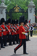 Troop19_0123j (ianh3000) Tags: london parade trooping colour 2019