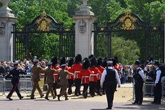 Troop19_0148j (ianh3000) Tags: london parade trooping colour 2019