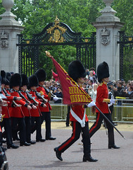 Troop19_0122jce (ianh3000) Tags: london parade trooping colour 2019