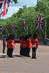 Troop19_0140j (ianh3000) Tags: london parade trooping colour 2019