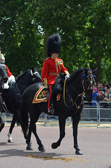 Troop19_0133j (ianh3000) Tags: london parade trooping colour 2019