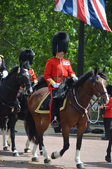 Troop19_0130j (ianh3000) Tags: london parade trooping colour 2019