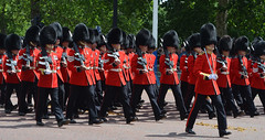 Troop19_0128jw (ianh3000) Tags: london parade trooping colour 2019
