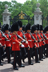 Troop19_0124j (ianh3000) Tags: london parade trooping colour 2019