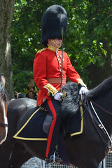 Troop19_0131jc (ianh3000) Tags: london parade trooping colour 2019