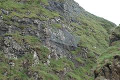 Rock-fall nets (Michael JasonSmith) Tags: thegobbins fence walk walkway coast sea