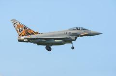 Eurofighter C.16 Typhoon (Boushh_TFA) Tags: eurofighter c16 typhoon 1431 spanish air force ejército del aire nato tiger meet 2018 31st base krzesiny poznan poland epks nikon d600 nikkor 300mm f28 vrii
