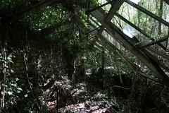 IMG_5246 (mookie427) Tags: urbex urban explore exploration exploring explorers ue derelict dereliction abandoned abandonment decay decayed empty vacant ruin ruined ruinous hospital colony asylum mental psychiatric uk