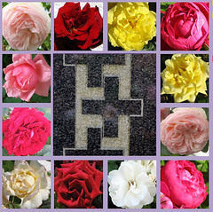 Ergeistre dich, mein schwacher Sinn (amras_de) Tags: rose rosen ruža rosa ruže rozo roos arrosa ruusut rós rózsa rože rozes rozen roser róza trandafir vrtnica rossläktet gül trinitatis slavnostnejsvetejšítrojice trinitysunday domingodetrinidad pyhänkolminaisuudenpäivä fêtedelasaintetrinité szentháromságünnepe solennitàdellasantissimatrinità treeiningssundag swietotrójcyswietej svetatrojica heligatrefaldighetsdag kreuz christiancross kristanakruco cruzcristiana ladinarist croixlatine križ crocecristiana krikšcioniukryžius kruis krzyzlacinski cruzcristã kršcanskikriž