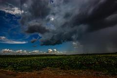 Storm, Fogg Dam, Northern Territory, Australia (Markus Branse) Tags: storm foggdam wetlands northernterritory australia northern territory tags gewitter darwin notthern austalien austral australie aussie oz thunder thunderstorm unwetter wetter weer meteo weather wolken cloud clouds wolke outback