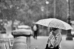 rain drops (Franck gallery) Tags: paris streetphoto photoderue streetsofparis ruedeparis noirblanc blackwhite woman femme bridge pont umbrella parapluie pluie rain gouttesdepluie raindrops goutte drops standing debout people bokeh