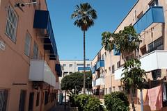 0_DSCF0931 (Daniel John Benton) Tags: calleterque almería almeria andalucía andalucia andalusia spain españa europeanunion eu europe street block palmtree trees fujifilm fuji x100f calle