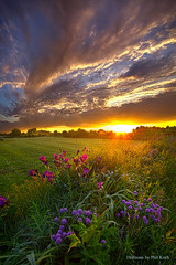On Your Prayers Up in the Sky (Phil~Koch) Tags: life mood emotions country rural outdoors colors living heaven weather horizons lines landscape art meadow sky sunset clouds scenic vertical photography office portrait serene morning dawn nature natural environment inspired inspirational season beautiful hope love joy dramatic unity trending popular canon fineart arts shadow sun sunrise light peace wisconsin shadows endless earth sunlight horizon pastel spring green blue grass field flowers