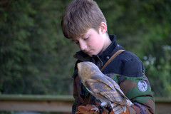 Kid with an owl (Tony Worrall) Tags: birds bird wild wildlife birdsofprey kept perch feathers turbary woods owl sanctuary preston lancashire turbarywoods charity cute welovethenorth nw northwest north update place location uk england visit area attraction open stream tour country item greatbritain britain english british gb capture buy stock sell sale outside outdoors caught photo shoot shot picture captured ilobsterit instragram