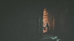 A Plague Tale Innocence (CHRISinSESSION) Tags: 4k games game screenshots screenshot gamescreenshots gamescreens digital art realism beautiful virtualphotography videogames screencapture societyofvirtualphotographers the a plague tale innocence