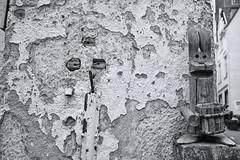 Optical Fiber Cables Preparation (RadarO´Reilly) Tags: street bw monochrome germany blackwhite noiretblanc zwartwit streetphotography nrw sw mk blanconegro iserlohn schwarzweis märkischerkreis rabbit bunny hase