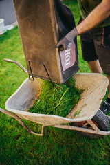 Disposing grass into a masonry trolley (Ivan Radic) Tags: garden gras gärtner summer sunlight flower cute green grass closeup work outdoors energy track gardening sunday lawn meadow trace lifestyle nobody line strip mow cutting bloom lawnmower worker athome petrol anonymous grassland protection mowing rasen blooming disposing condition rasenmäher concetration rasenmähen masonrytrolley rasenmã¤her gã¤rtner sigma35mmf14dghsmart nikond610 rasenmã¤hen
