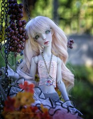 Out and about (twilitize) Tags: adorable adventure art awesome beautiful beauty bjd bjdphotography cool cute cutie camera dolls doll dolly dollphotography darling dollworld dollytime alien lillycat grey pinkhair pink hair