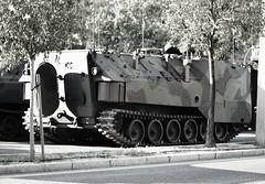 Tercio de Armada (TEAR) - SPANISH NAVY (DAGM4) Tags: difas2019 españa europa europe espagne espanha espagna espana espanya espainia spain spanien spanishnavy infanteriademarinaespañola tear terciodearmada sevilla andalucía militar military
