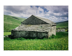 Barn Studies 1 (gerainte1) Tags: yorkshiredales yorkshire dales buttercups flowers barn colour film velvia50 hasselblad501