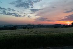 DSC05080 (jensmischl) Tags: sony a6300 coesfeld sonnenaufgang sonnenuntergang sonne landschaft deutschland 3 linden coesfelder berg nrw 18105 18 105 f 4