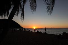 IMG_9085 (PyL06) Tags: deshaies plage antilles caraïbes beach sea sun sunset coucher de soleil palmier horizon