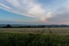DSC05206 (jensmischl) Tags: sony a6300 coesfeld sonnenaufgang sonnenuntergang sonne landschaft deutschland 3 linden coesfelder berg nrw 16mm 1650