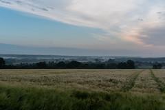 DSC05205 (jensmischl) Tags: sony a6300 coesfeld sonnenaufgang sonnenuntergang sonne landschaft deutschland 3 linden coesfelder berg nrw